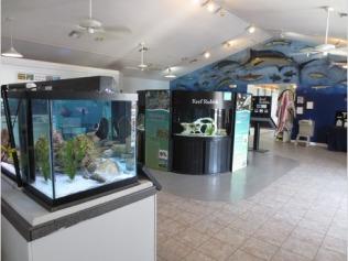 inside-the-visitor-center