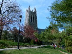 st-joes-university