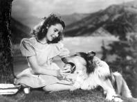 COURAGE OF LASSIE, Elizabeth Taylor, Lassie, 1946