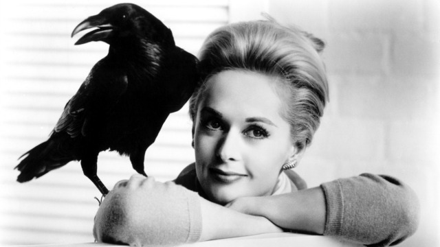 the_birds_-_h_-_1963